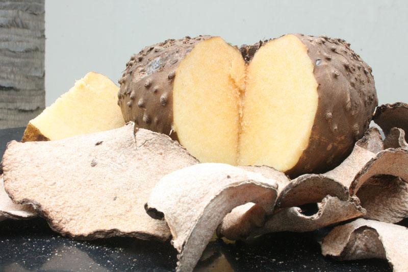 konjac flour supplier indonesia bariball agriculture